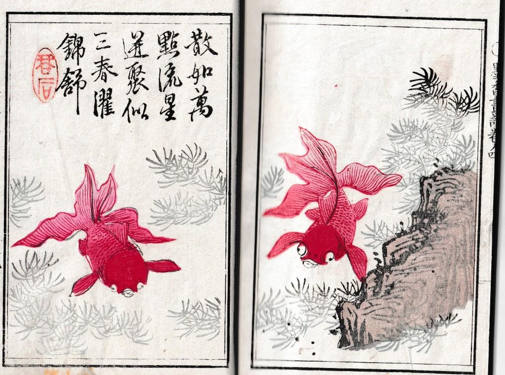 『墨香画譜 巻3』 金魚