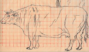 ●牛(下絵右 朱線割付)