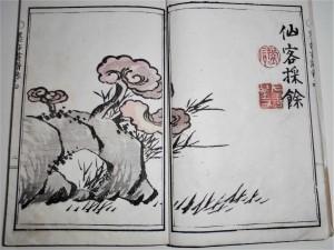 霊芝 石(墨香 最初の図)