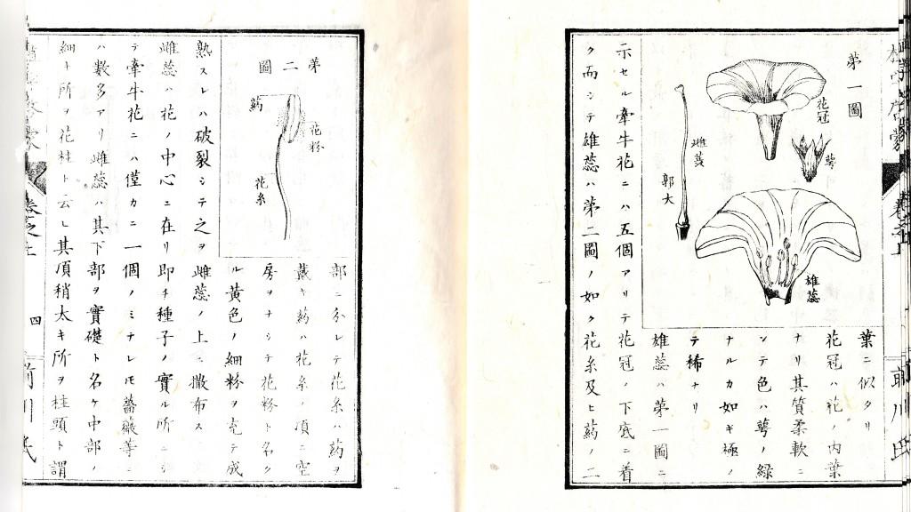 第一図 (上 3丁 ) (3)